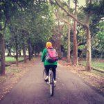 Sepedaan